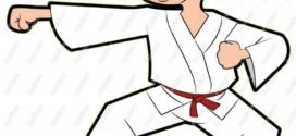 272x125 Young Karate Guy Clip Art