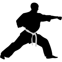 256x256 Karate Punch Icon Karate Iconset Kampsport Find Hold
