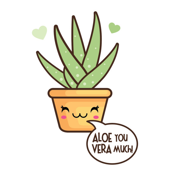 570x590 50% Off Sale Kawaii Cactus Valentine Clipart By Cockatoodesign