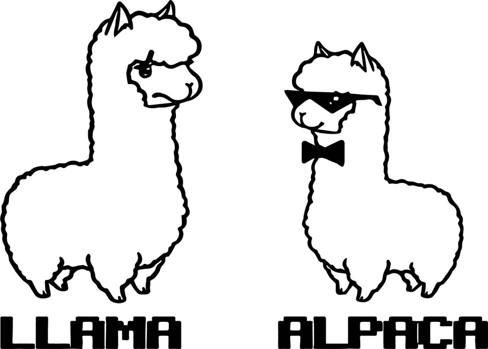 974x697 Coloring Pages Alpaca Coloring Pages Alpaca Coloring Pages