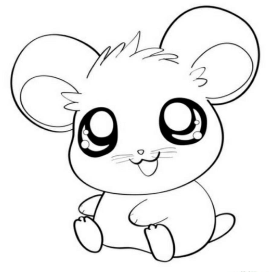 900x900 Httpcolorings.cocute Kawaii Animal Coloring Pages