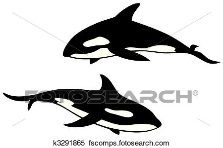 450x300 Clipart Of Killer Whale K3291865