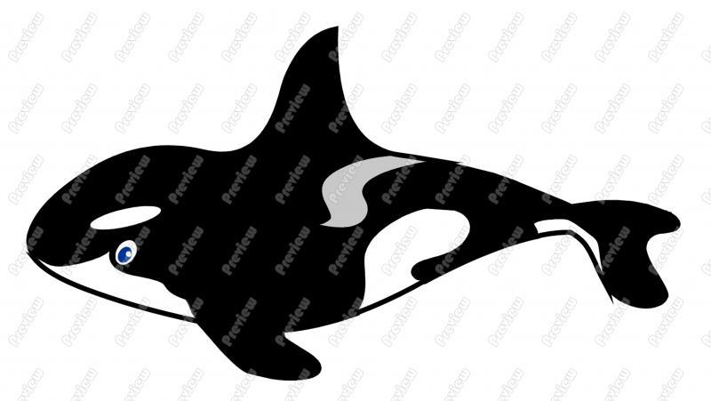 800x451 Orca Killer Whale Character Clip Art