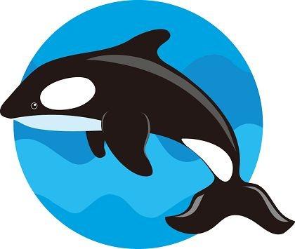 420x355 Top 89 Whale Clip Art