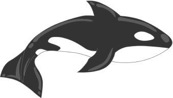 340x193 Whale Clipart Baby Killer