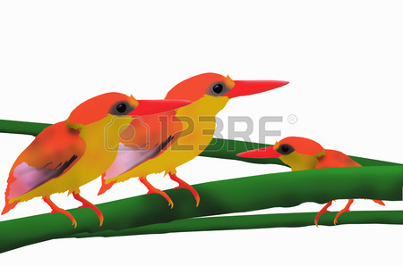 Kingfisher Bird Clipart
