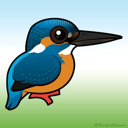 450x450 Cute Common Kingfisher By Birdorable Lt Meet The Birds