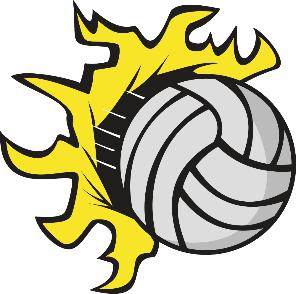 1000x990 Volleyball Clipart Free Stick Figures