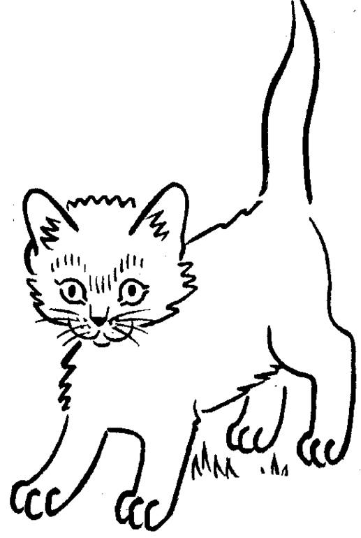 517x770 Kitten Coloring Pages