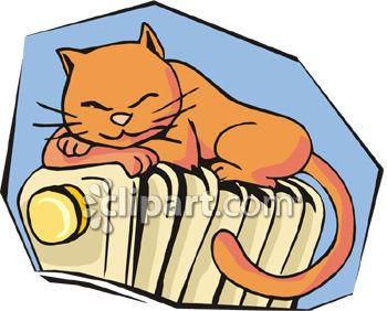 350x282 Kitten Sleeping On A Radiator