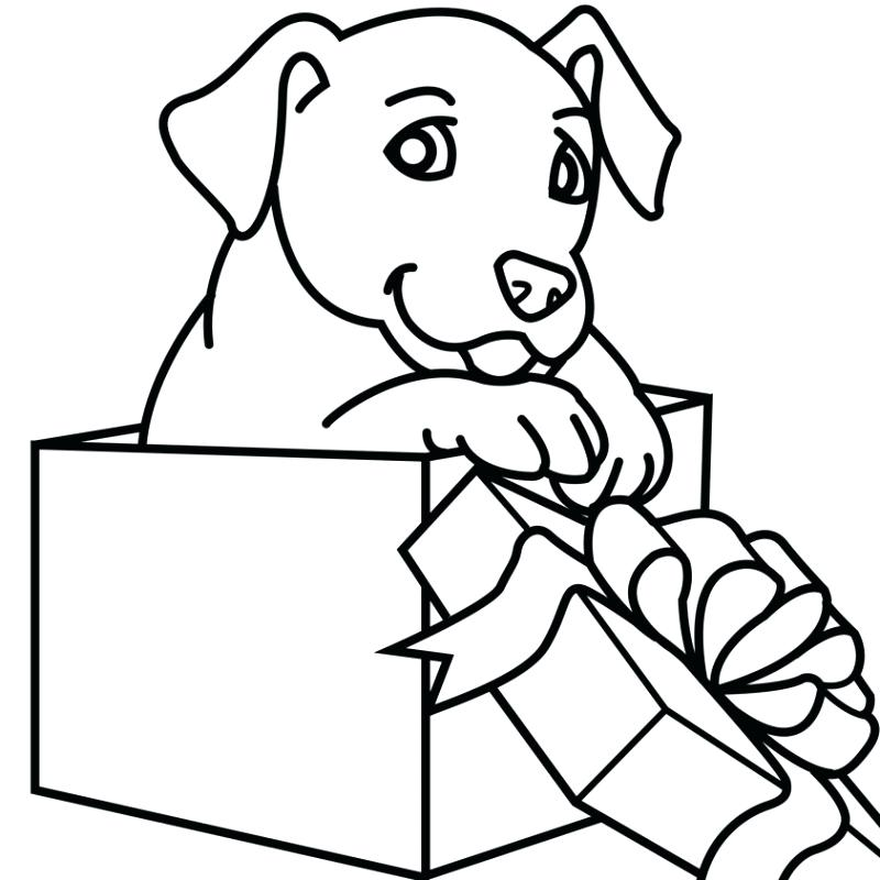 800x800 Superb Astonishing Coloring Pages Puppies And Kittens New Cute