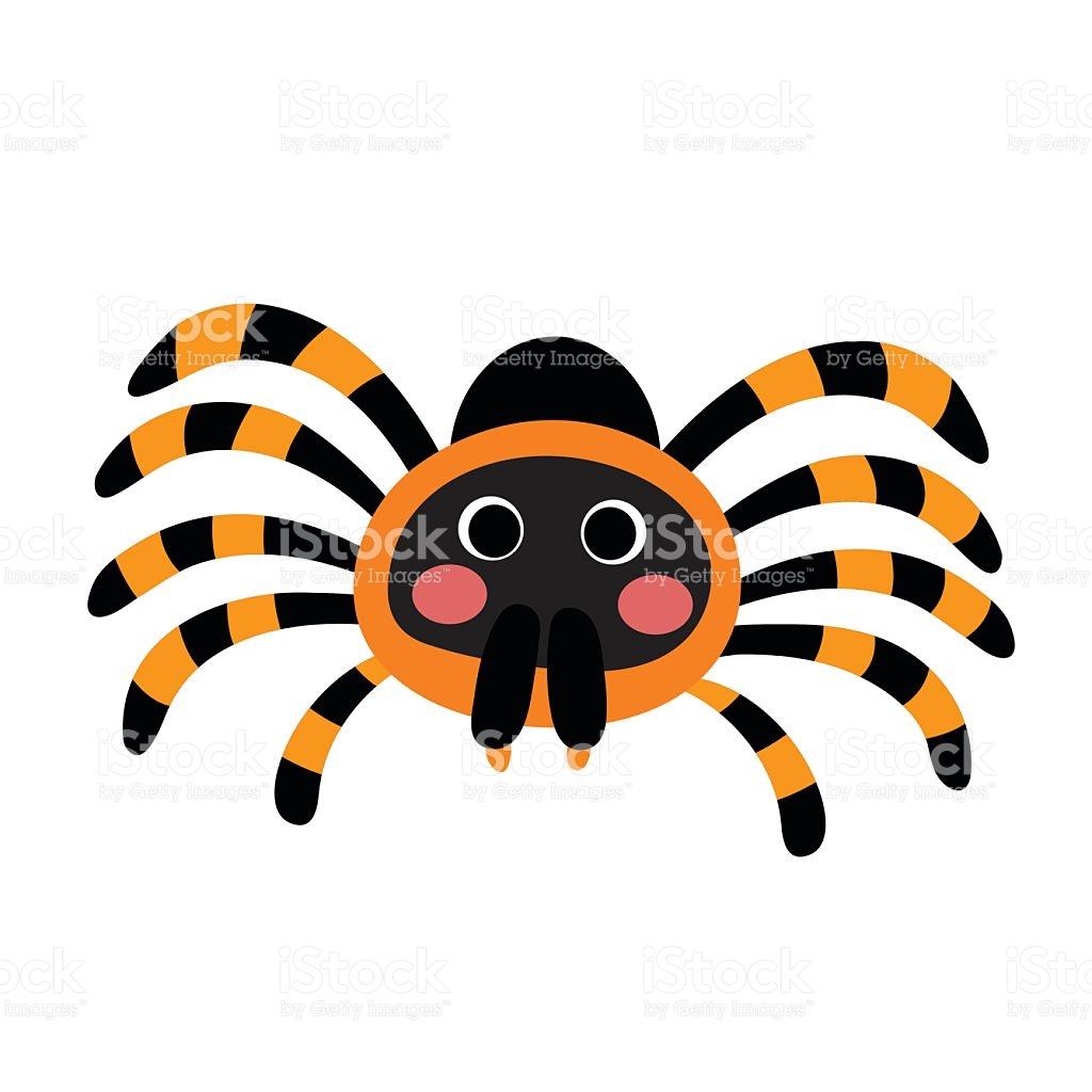 1024x1024 Tarantula Clipart Rainforest Animal