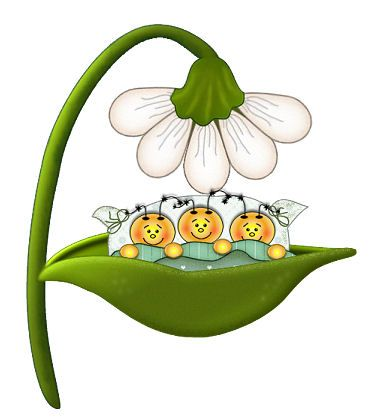 382x419 144 Best Insects Clip Art Images Pictures