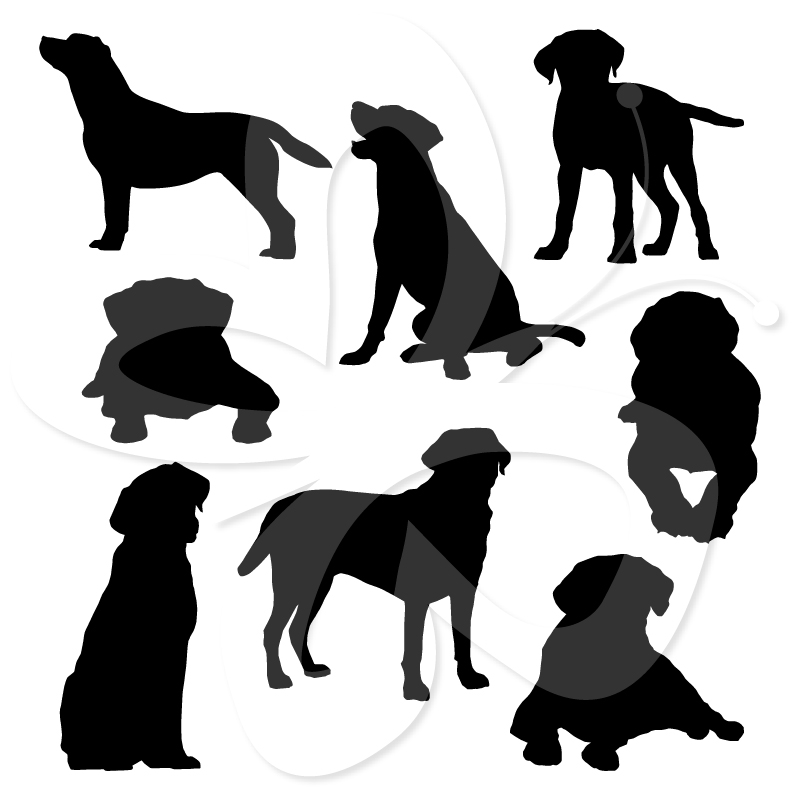 800x800 Black Labrador Silhouette Clipart