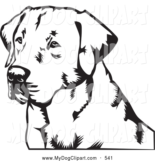 600x620 Clip Art Of A Friendly Labrador Retriever Dog By David Rey