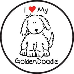 236x236 Goldendoodle Clipart Goldendoodle Drawing