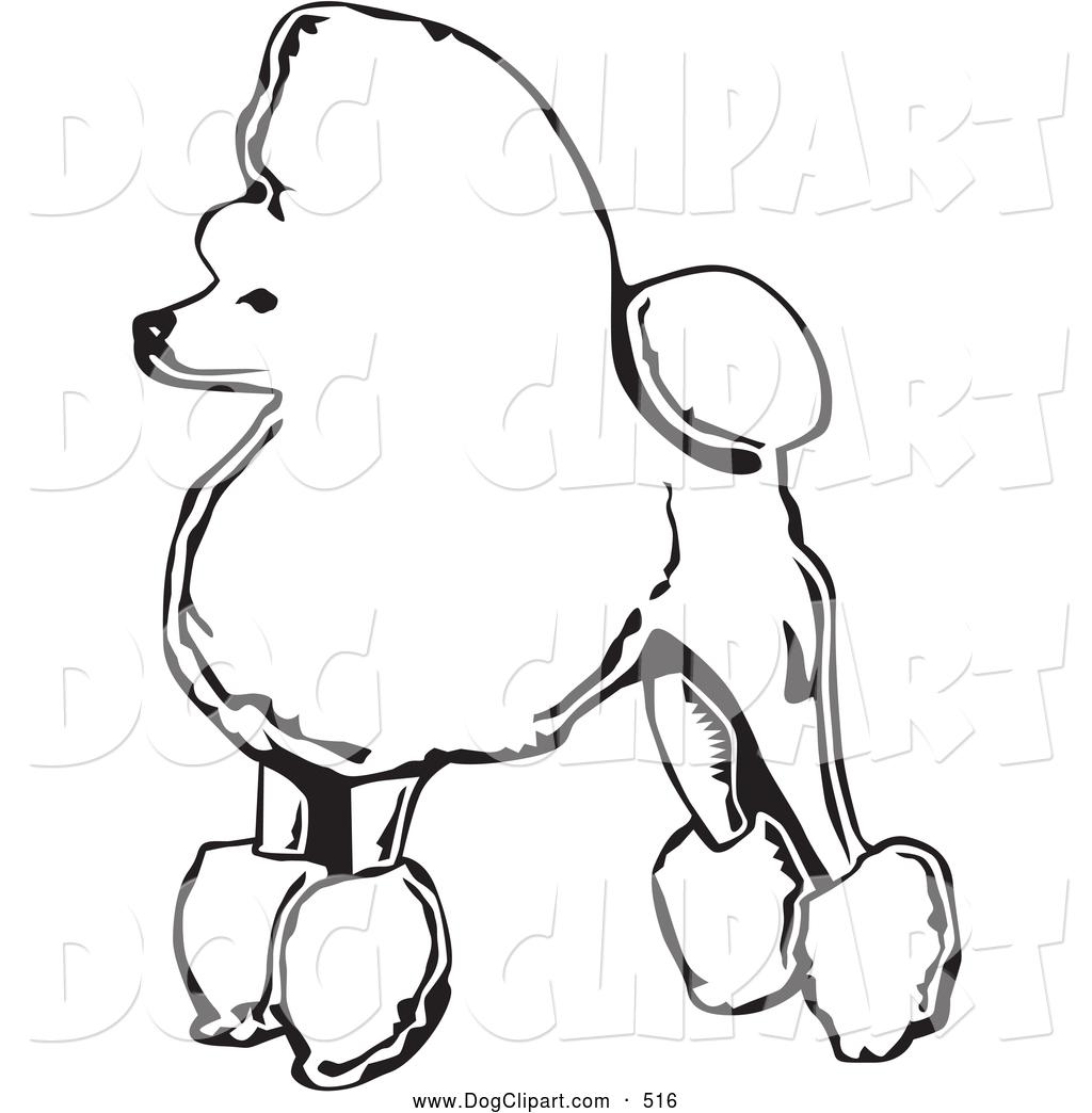 1024x1044 Labrador Poodle Clip Art Cliparts