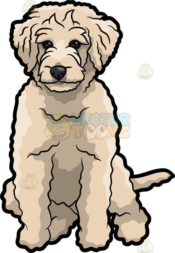 710x1024 Sad Golden Doodle Dog Vector Clip Art Cartoon, Labradoodle Clip