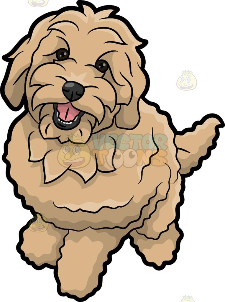 763x1024 A Charming Golden Doodle Dog Golden Doodle Dog, Doodle Dog