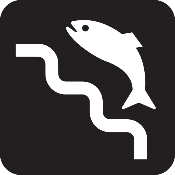 600x600 Fish Ladder Black Clip Art