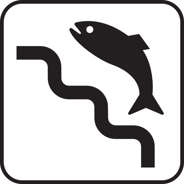 600x600 Fish Ladder White Clip Art