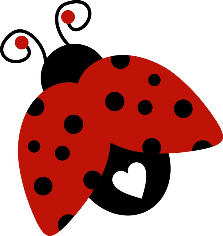 Lady Bug Clipart