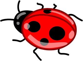 340x250 Free Ladybug Clipart 5