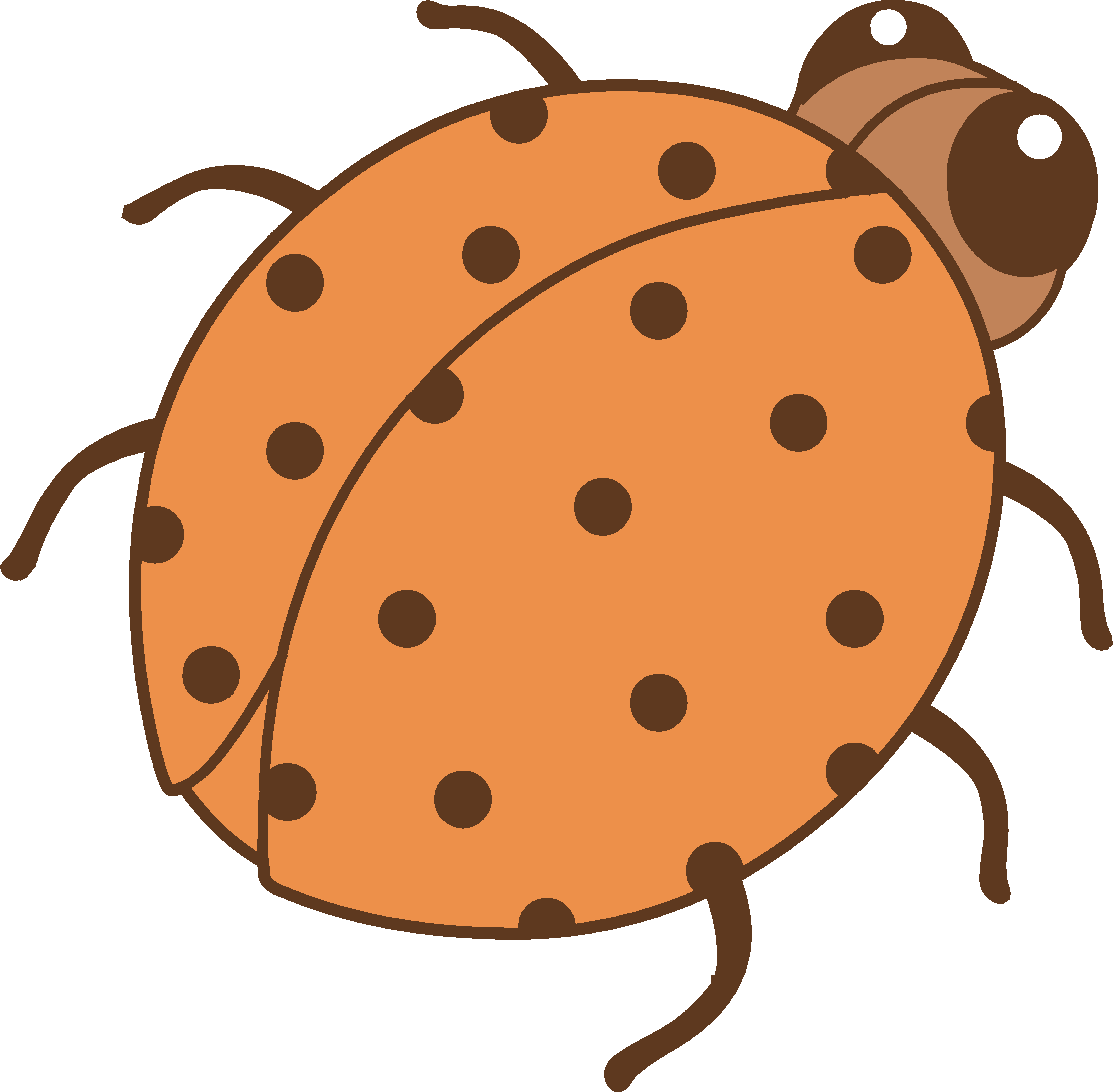 5364x5264 Ladybug Clipart Orange
