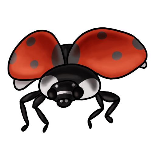 500x500 Free Ladybug Clipart