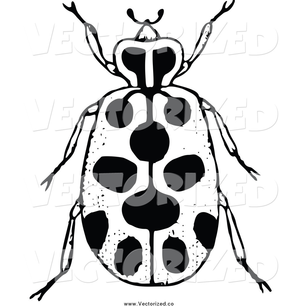 1024x1044 Beatle Clipart Black And White