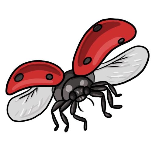 500x500 Ladybug Clipart Black And White Free Clipart Images