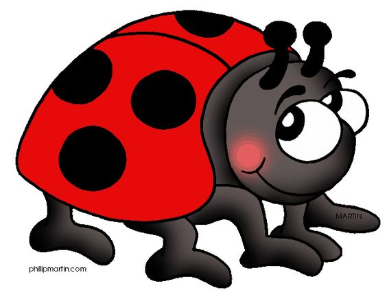 564x435 Female Ladybugs Cartoon Ladybug Of Old Clipart