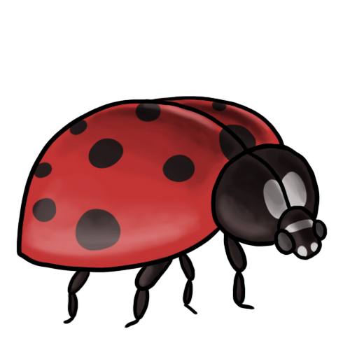 500x500 Free Ladybug Clip Art Drawings Andlorful Images 4