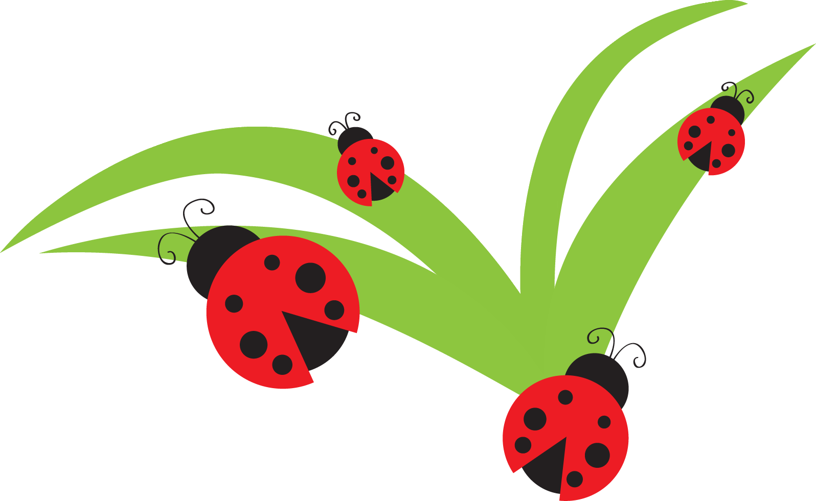 1596x981 Ladybug Lady Bug Clip Art Bug Flower Leaf Branch Clipart Personal