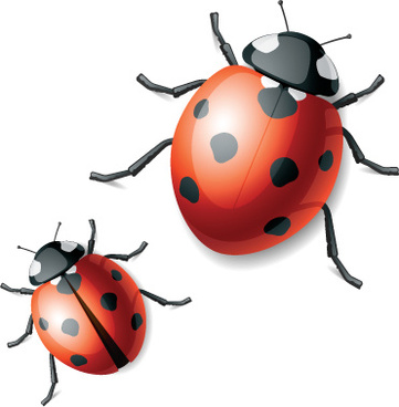 361x368 Free Download Ladybug Vector Free Vector Download (196 Free Vector