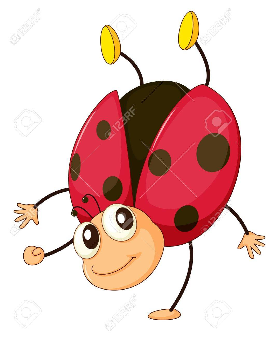 1064x1300 21,782 Ladybird Stock Vector Illustration And Royalty Free