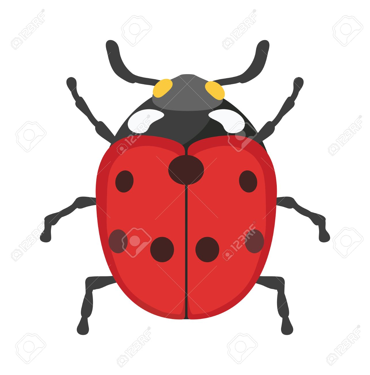 1286x1300 Ladybug Vector Insect Isolated On White Background. Flat Red