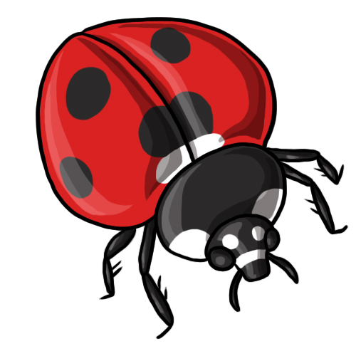 500x500 Free Ladybug Clip Art Drawings Andlorful Images 5