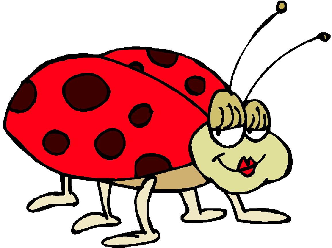 1155x865 Ladybug Clipart Animated