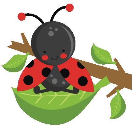432x432 Ladybug On Leaf Svg Scrapbook Cut File Cute Clipart Files