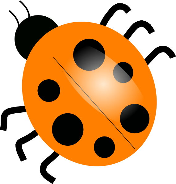 570x596 Orange Ladybugs Clip Art