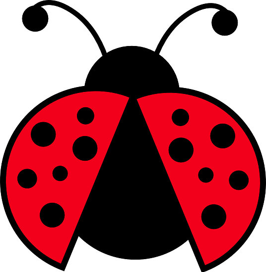 536x550 Clipart Ladybug