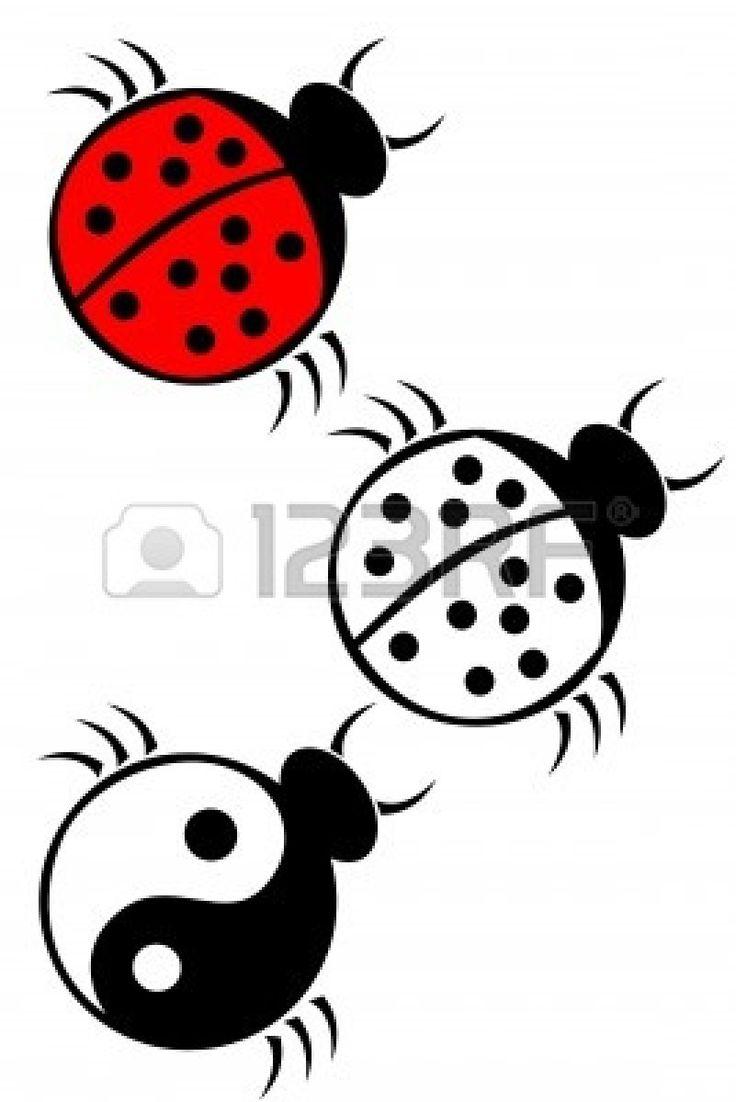 Ladybug Outline