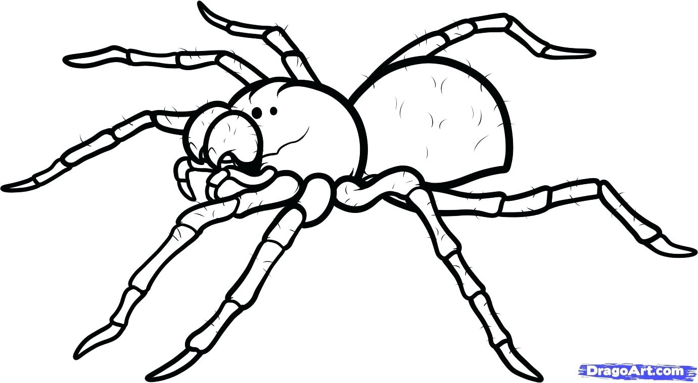 1381x759 Coloring Pages Outstanding Bug Outline. Bug Outline Vector