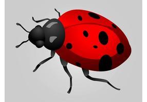 286x200 Ladybug Free Vector Art