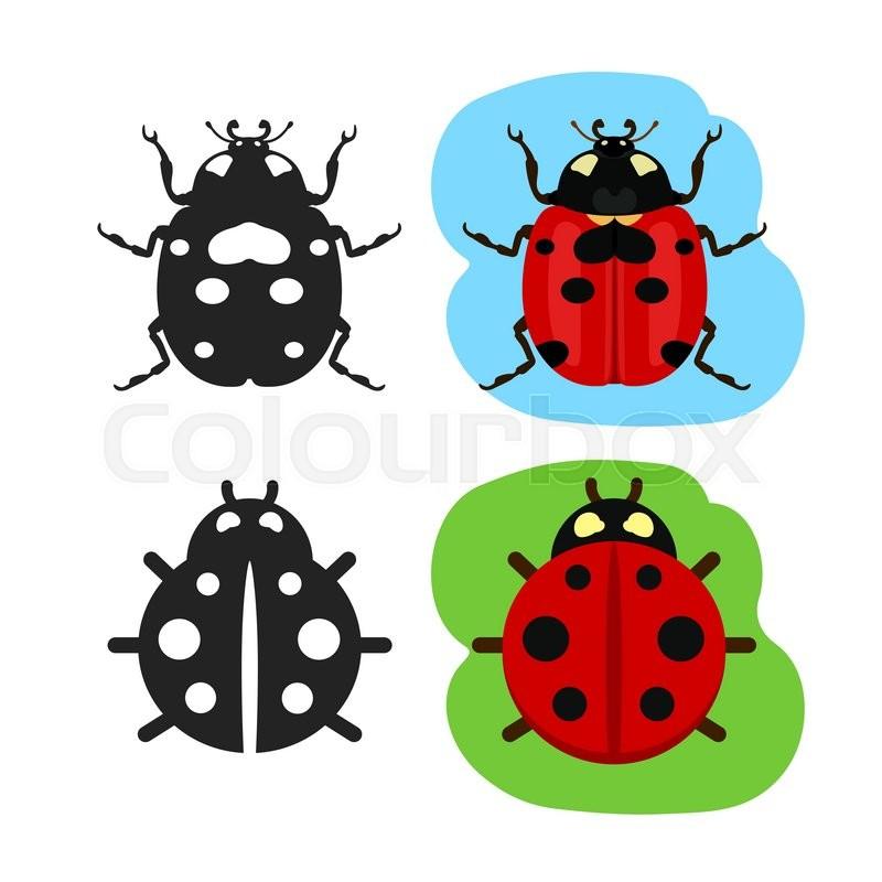 800x800 Ladybug Flat Color Vector Icon, Black Silhouette Bug Ladybug