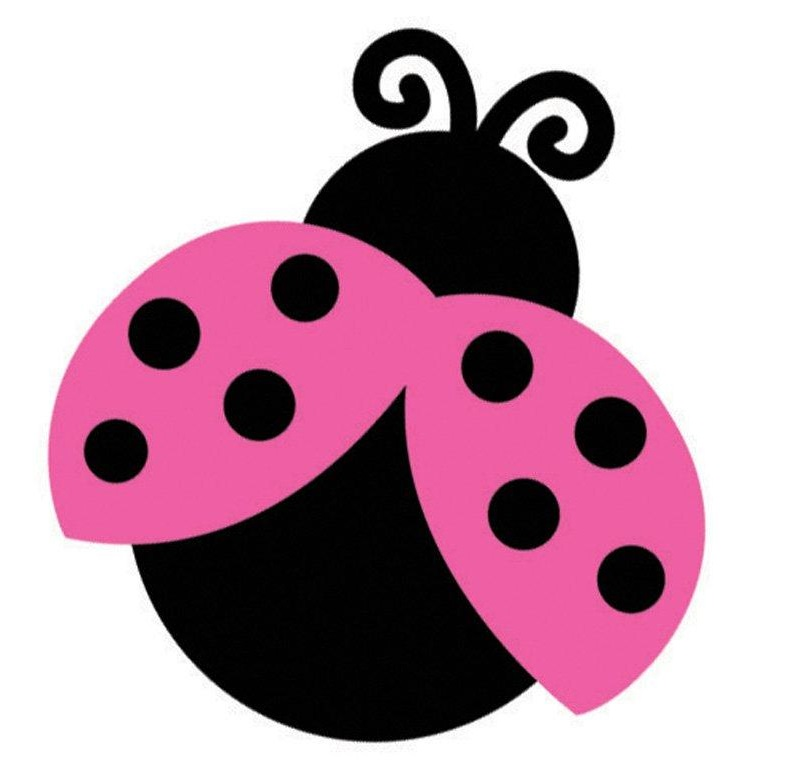 785x772 Bug Clipart Pink Lady
