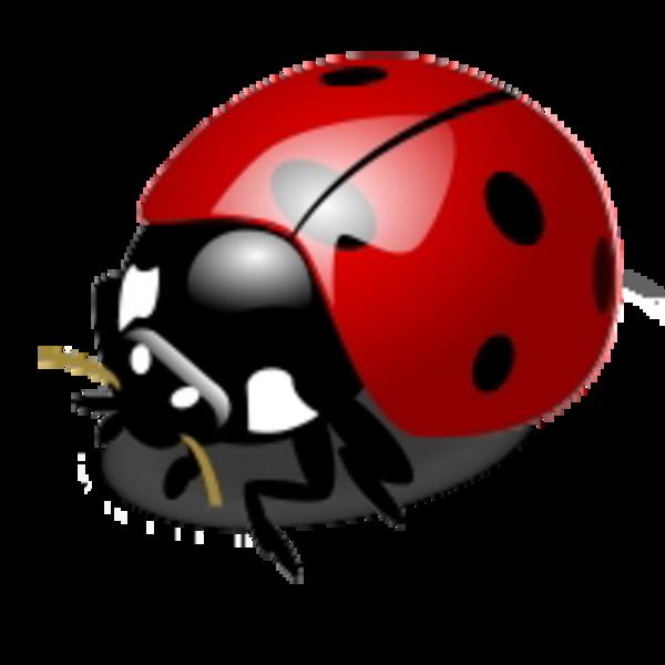 600x600 Ladybug Free Images