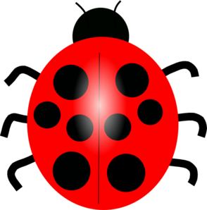 294x298 Realistic Clipart Ladybug