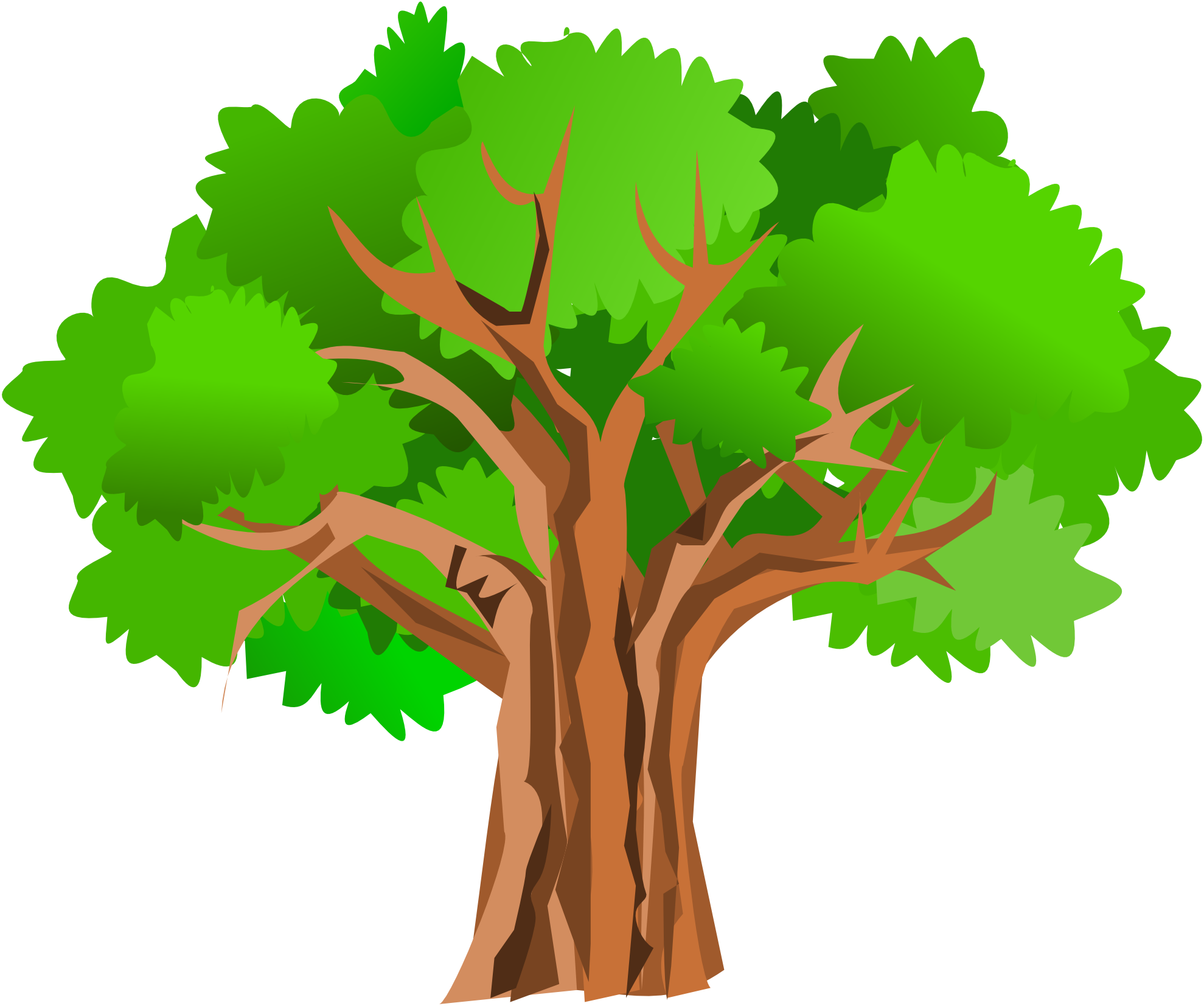 1979x1653 Maple Tree By Lake Clipart Cliparthut